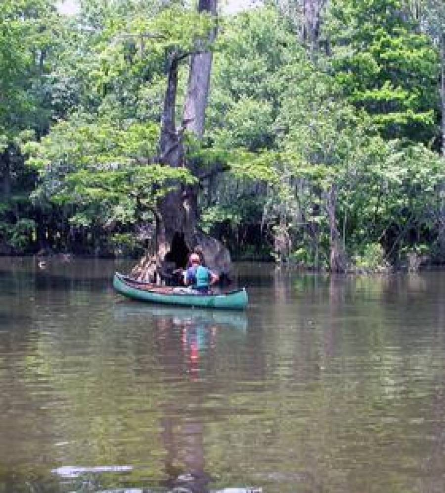 ALABAMA CANOE TRAILS